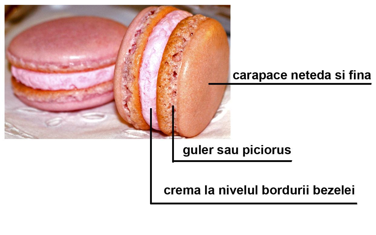 2-caracteristici macarons